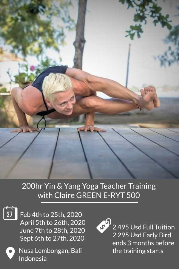 vinyasa yin yoga teacher training bali, best vinyasa yoga teacher training