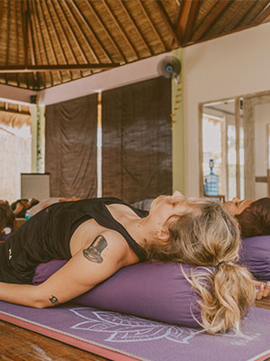 Yin Teacher Training Bali, meridians, 5 elements yin yoga