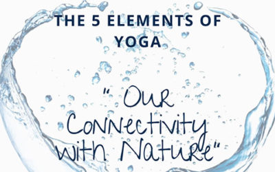 Yin Yoga Element | Connectivity with Nature