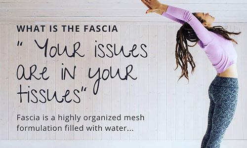 yin yoga fascia articla